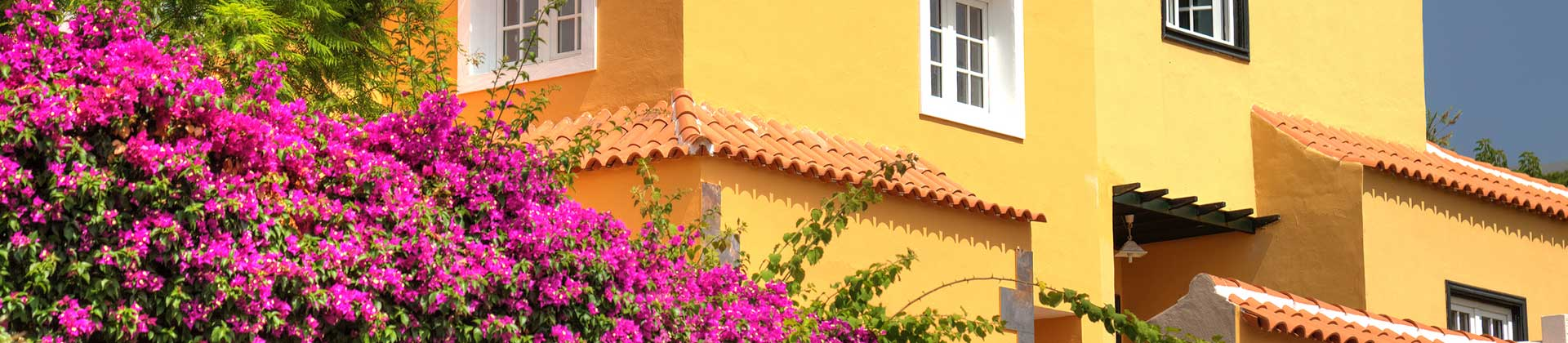 https://www.goodmorningtenerife.com/wp-content/uploads/2014/08/02_slide_flowers_GM_Tenerife.jpg