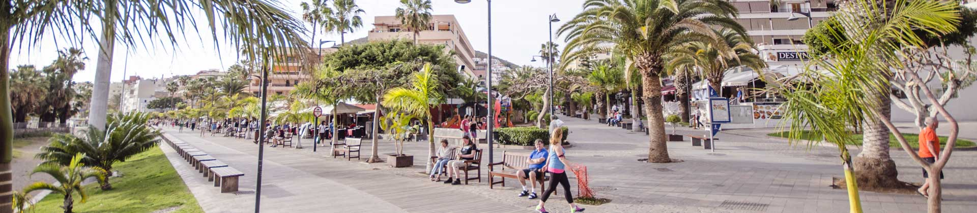 https://www.goodmorningtenerife.com/wp-content/uploads/2014/08/05_slide_landscape_GM_Tenerife.jpg