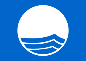 300px-Blue_Flag_Logo