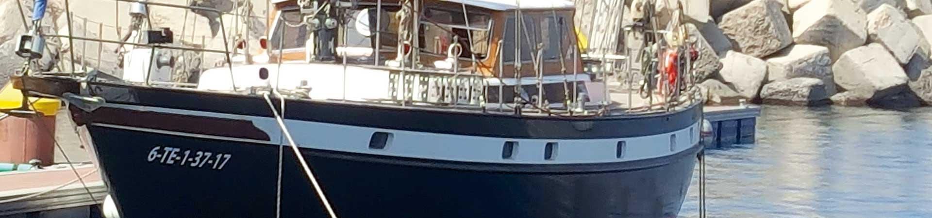 https://www.goodmorningtenerife.com/wp-content/uploads/2018/01/03_slide_albatros-charter-excursions-tenerife-1920x450-good-morning-tenerife.jpg