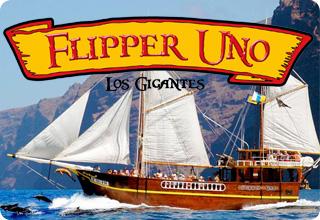 Flipper Uno